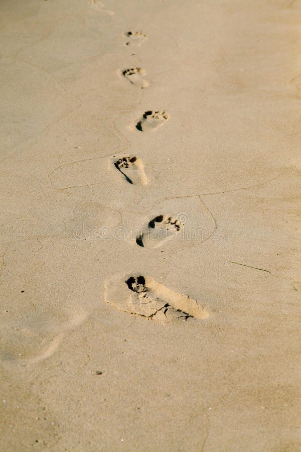 Download Footprints stock photo. Image of vertical, female, horizontal - 14855482
