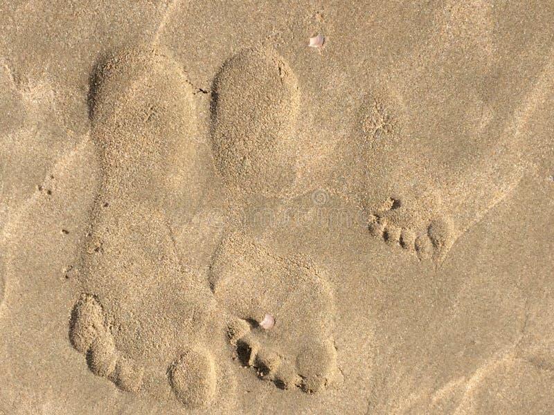 footprints photos stock