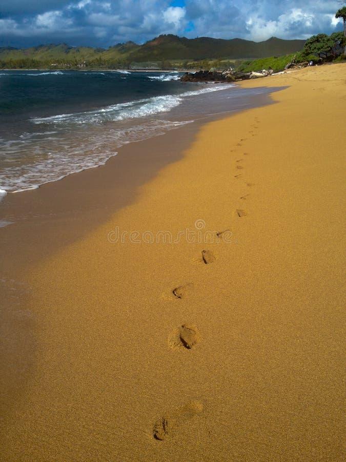 footprints photographie stock libre de droits