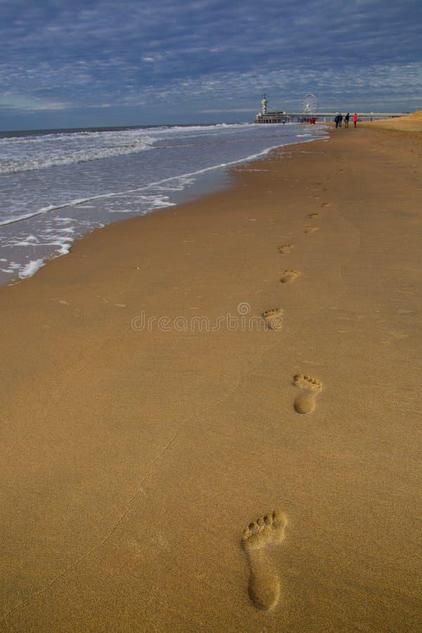 footprints стоковые фото