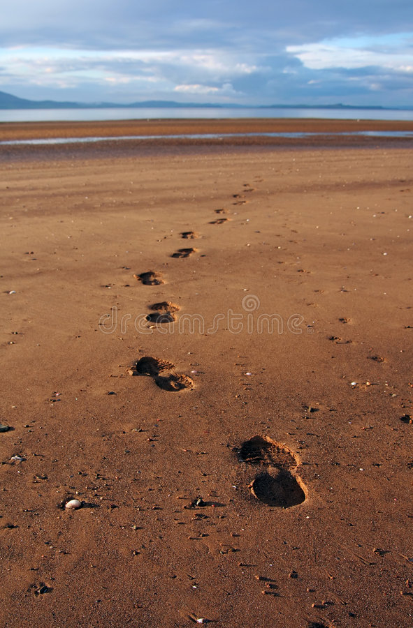 Download Footprints On Beach Royalty Free Stock Photos - Image: 1421528