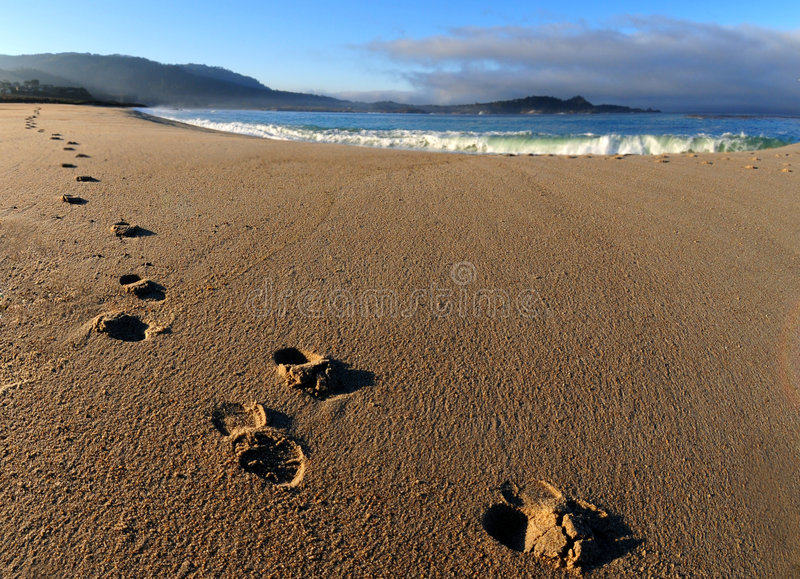 Footprints On Beach Stock Images