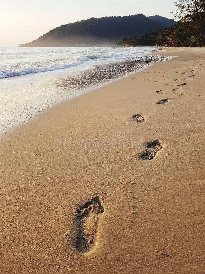 Footprints on beach stock photos