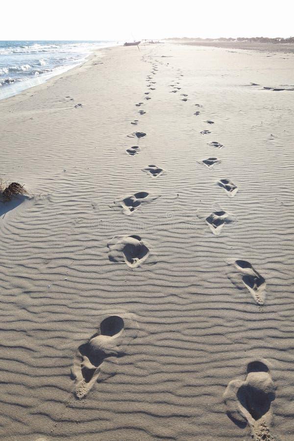 Footprints in beach sand stock photo