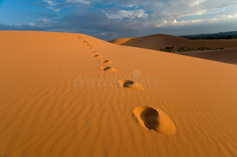 Footprints, Coral Pink Sand Dunes Royalty Free Stock Image