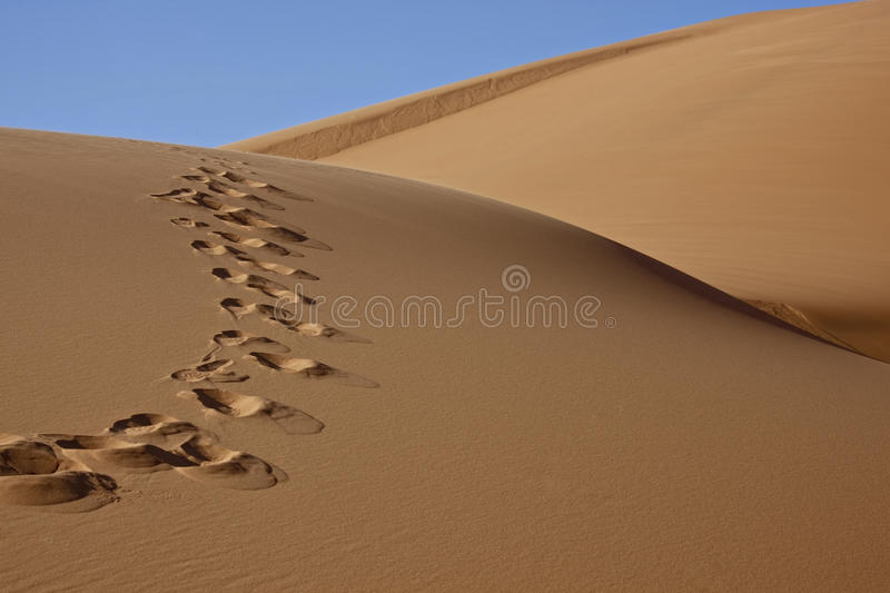 Footprints in desert sand stock images
