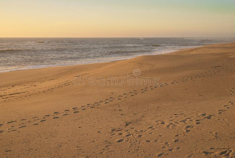 Footprints on empty beach. The only marks of people on the beach at the end of the day are the footprints that stayed behind under the orange light in Portugal stock images