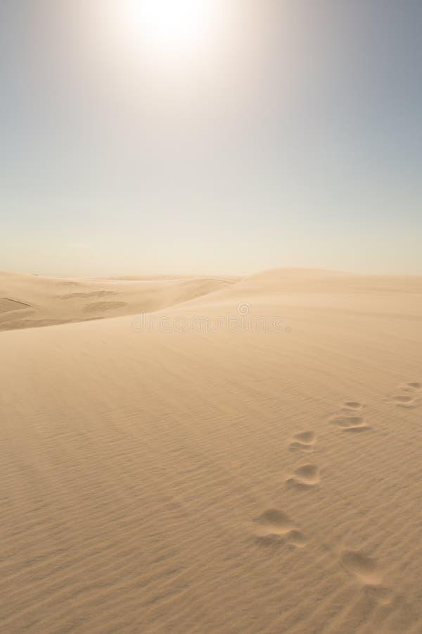 Footprints going over sand dunes stock photos