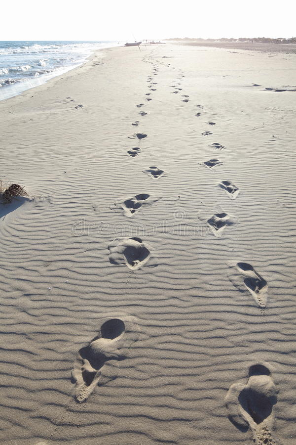 Free Footprints In Beach Sand Stock Photo - 10627700
