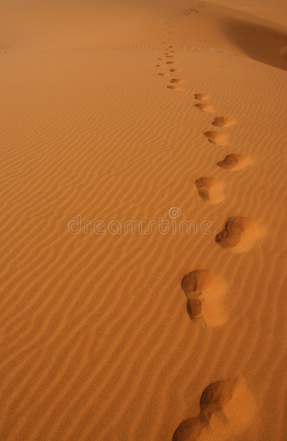 Free Footprints In The Desert Stock Photos - 5830193
