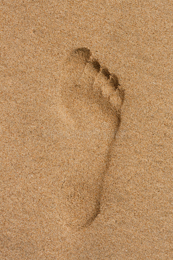Free Footprints In The Sand Royalty Free Stock Photography - 18201067