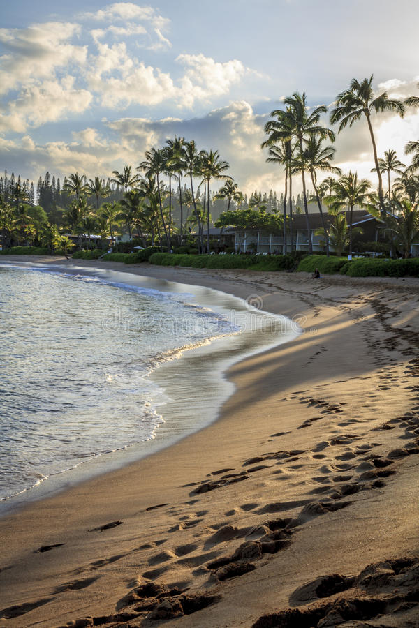 Free Footprints In The Sand On Napili Bay At Dawn Royalty Free Stock Photo - 53035995