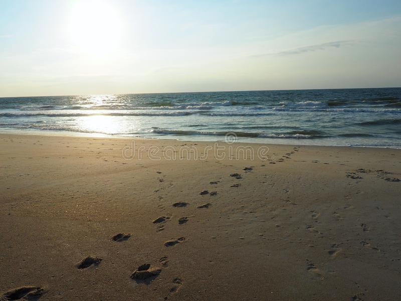 Footprints Leading into the Atlantic Ocean at Carolina Beach. Footprints in the sand leading into the Atlantic Ocean in Carolina Beach, North Carolina with the royalty free stock photo