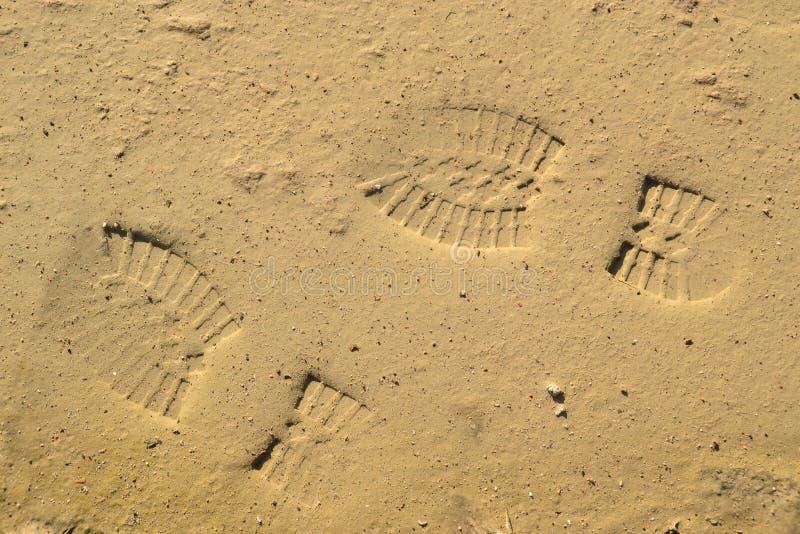Footprints on the mud stock image