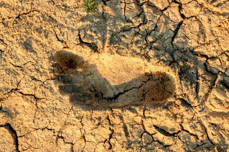 Footprints of people on dry, cracked ground, drought stock photos