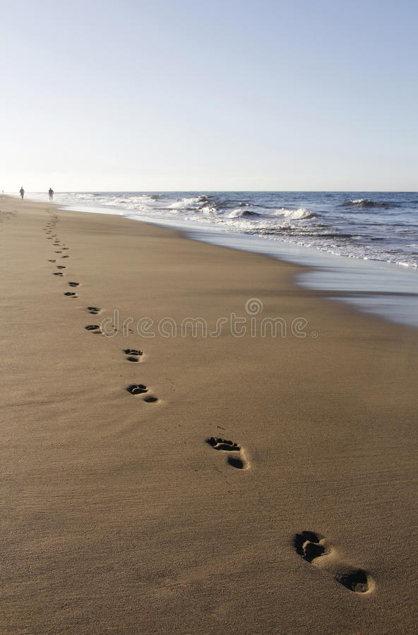 Download Runner footprints on sand stock photo. Image of wave - 30151012