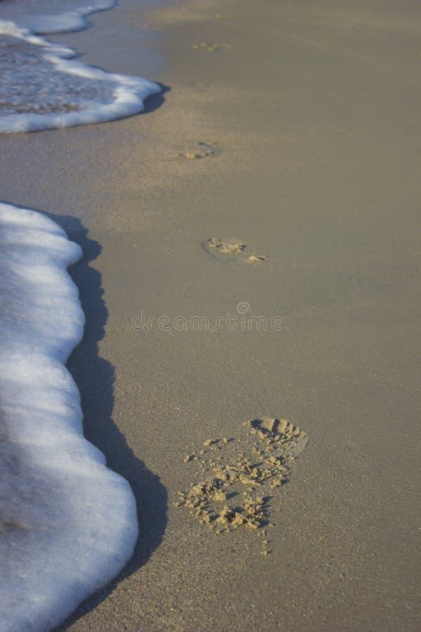Footprints of a running man on sand sunrise background sea stock photo