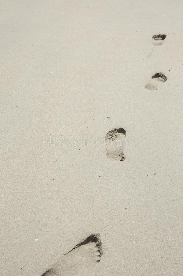 Download Footprints in the sand stock photo. Image of nobody, empty - 12135258