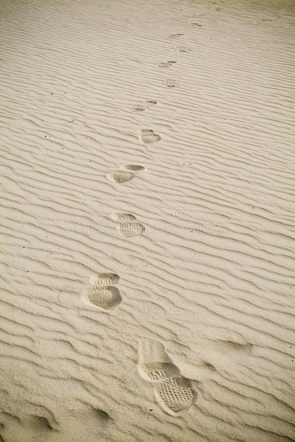 Download Footprints in Sand stock image. Image of beach, marks - 14164391