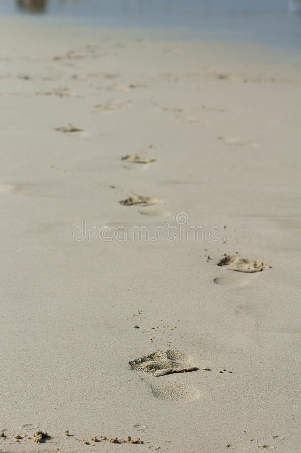 Download Footprints in the sand stock image. Image of footprints - 16339401