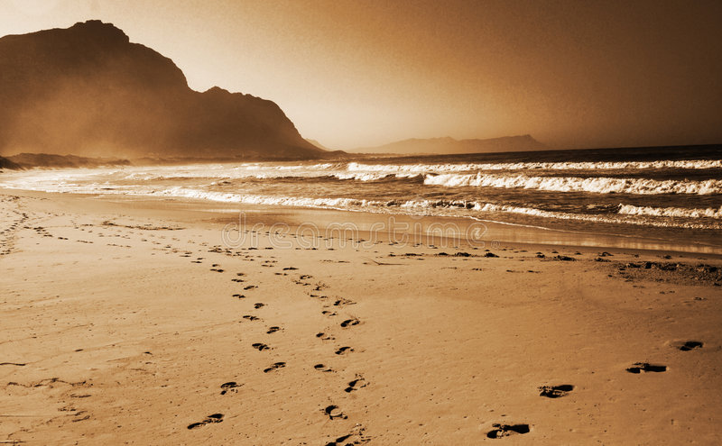 Footprints in the sand on the royalty free stock photo