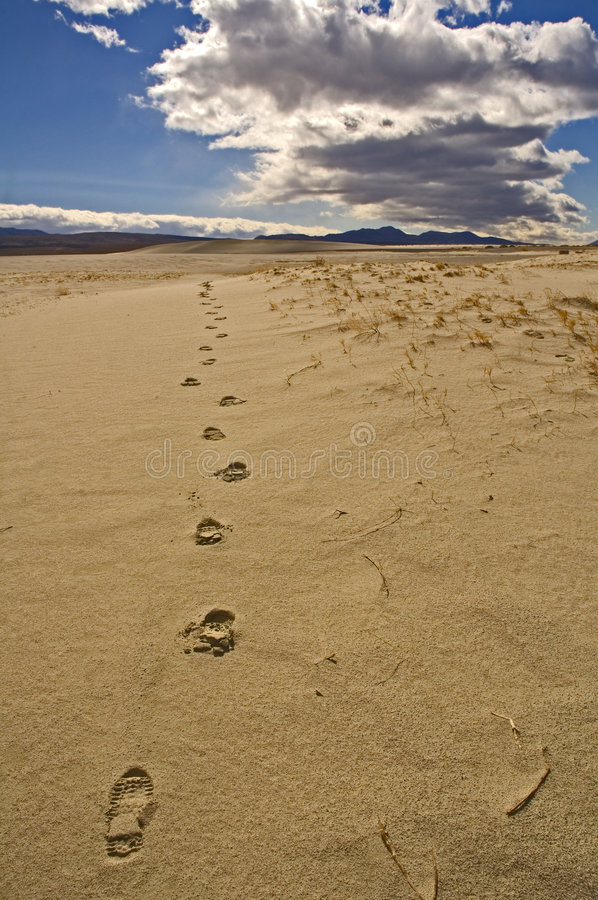 Footprints in the sand stock images