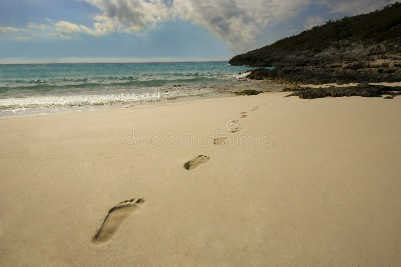Download Footprints in the Sand stock image. Image of caribbean - 8224907