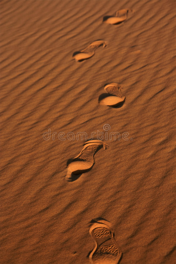 Download Footprints in sand stock photo. Image of activity, lonely - 8230532