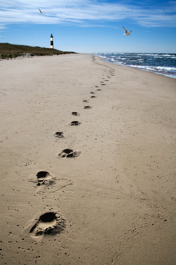 Free Footprints Sand And Surf Stock Photos - 8137693