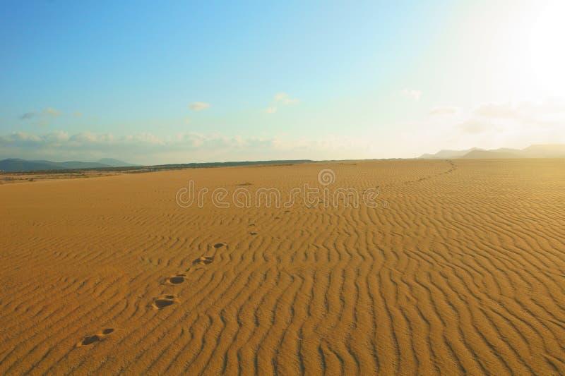 Footprints in sand desert royalty free stock photo