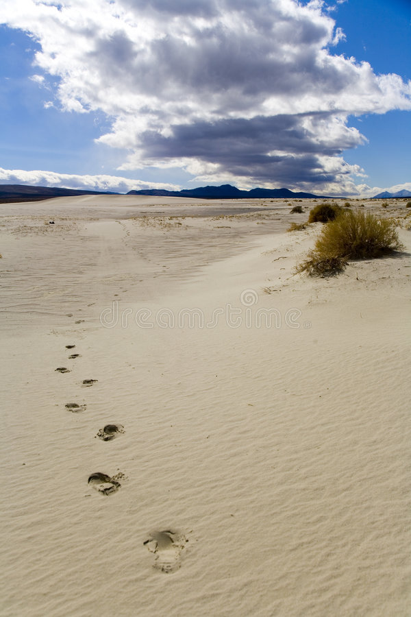 Download Footprints In A Sand Dune Royalty Free Stock Photography - Image: 2048617