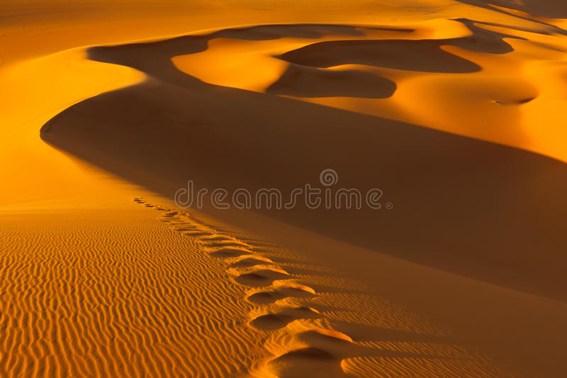 Footprints - Sand Dunes - Murzuq Desert, Sahara. Footprints in the sand dunes at sunset - Murzuq Desert, Sahara, Libya royalty free stock images