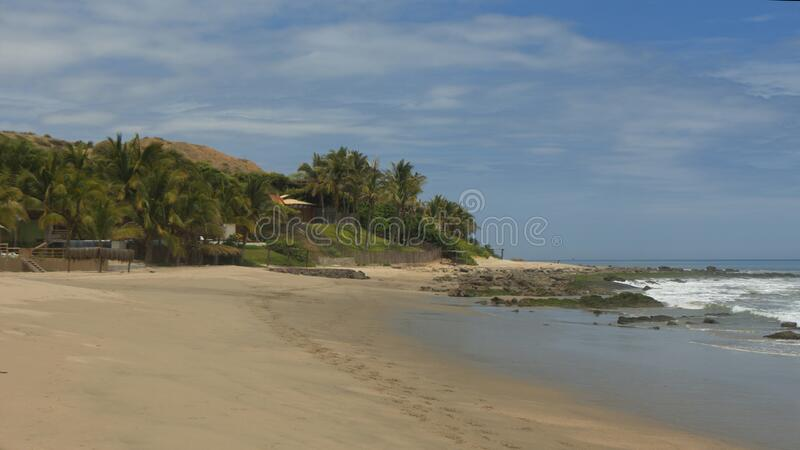 Footprints in the sand of an empty beach with palm trees in the background and blue sky with clouds royalty free stock image