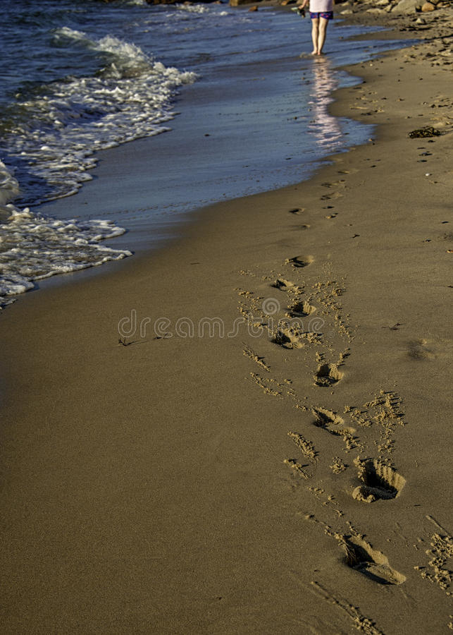 Footprints in the sand royalty free stock images
