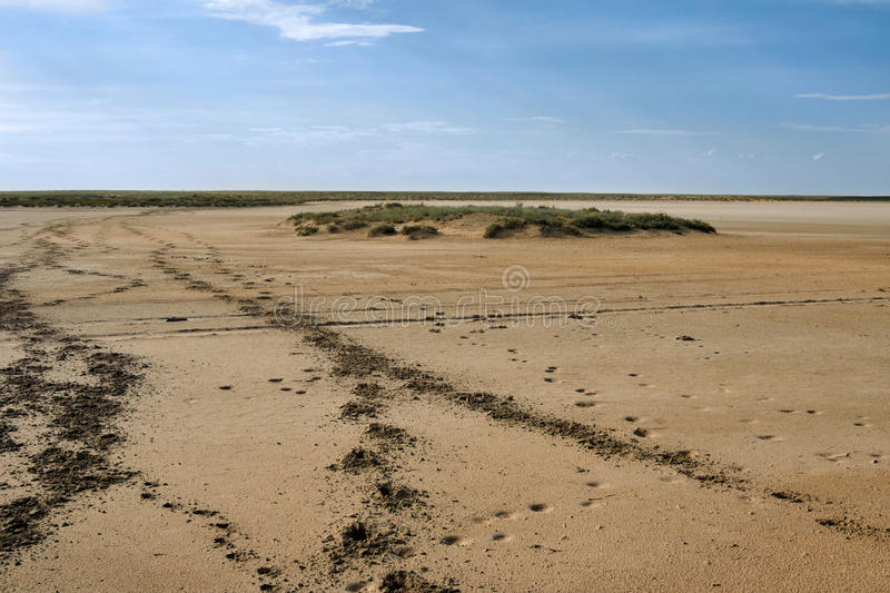 Download Footprints in the sand. stock image. Image of steppe - 56292873