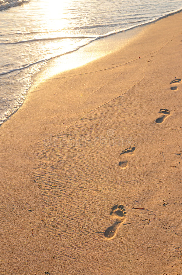 Footprints on sandy beach at sunrise royalty free stock images