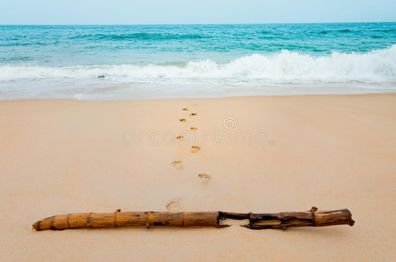 Footprints in the sea sandy beach with dried bamboo on a vacation time in Phuket, Thailand stock photo