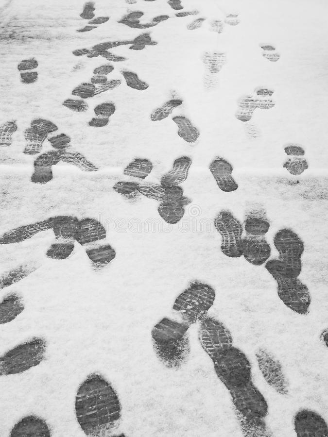 Download Footprints in the snow stock photo. Image of walking - 20066530