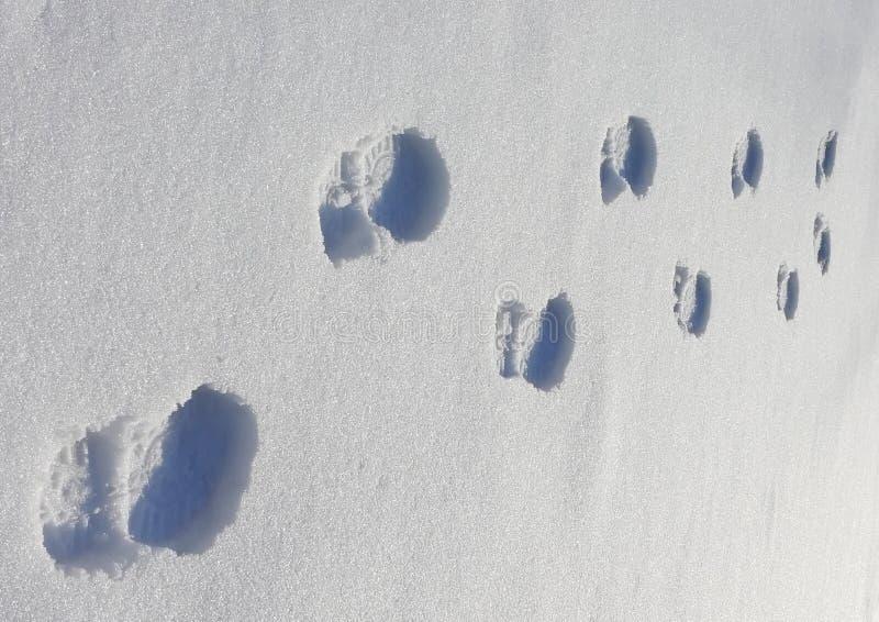 Footprints on the snow royalty free stock photos