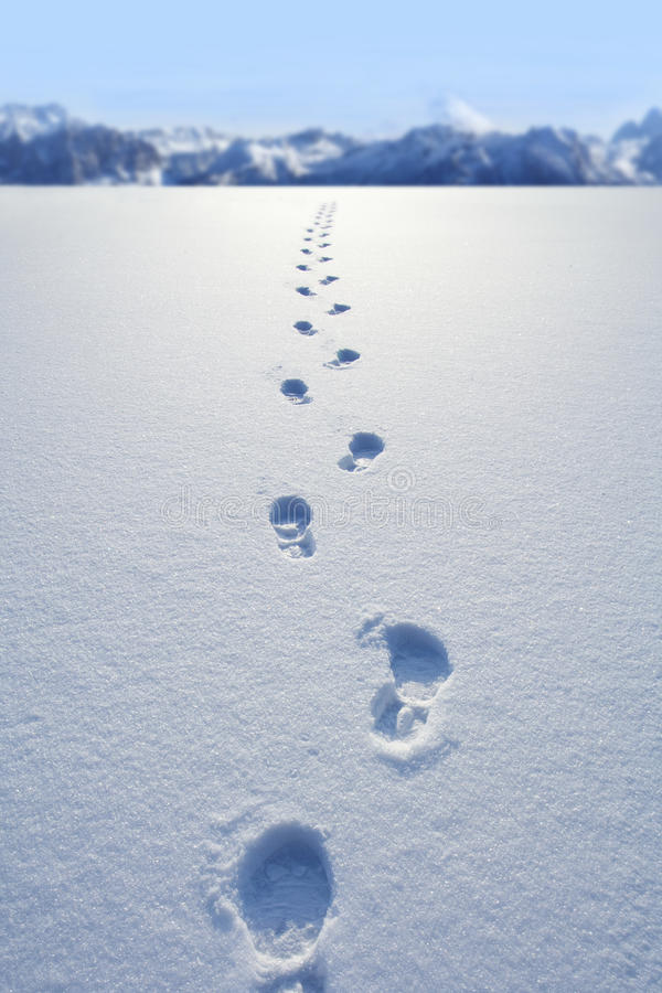 Footprints in snow. Photo of Footprints in snow royalty free stock photo