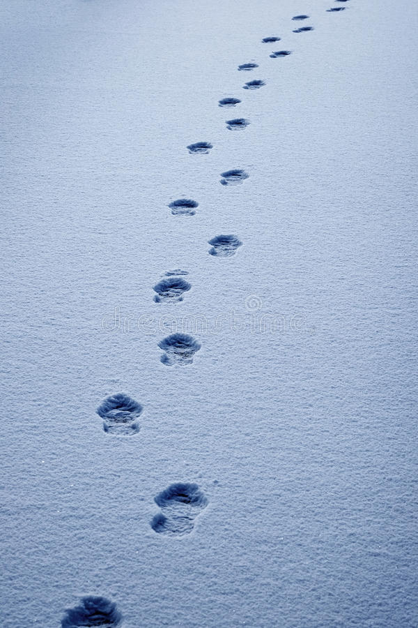 Footprints in the Snow Show a Path for Progress stock photography