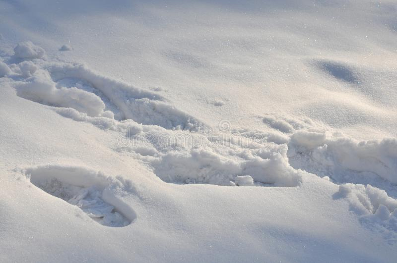 Footprints in the snow. ,Footprints more messy royalty free stock photography