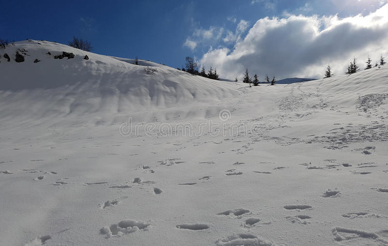 Footprints on the snow stock photography