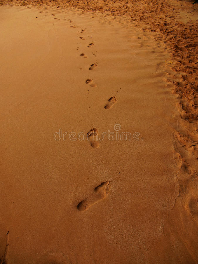 Footprints at Sunset. The imprints of someone walking in the smooth wet sand of a Maui beach stock photos