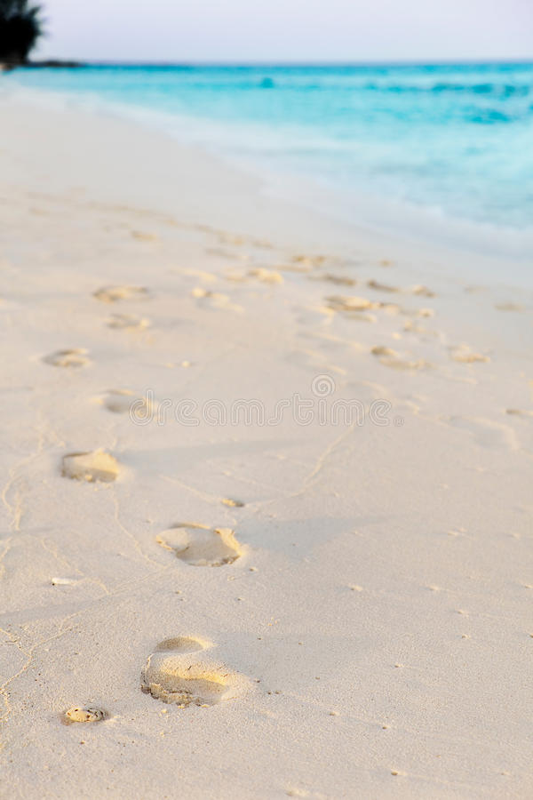 Download Footprints In Tropical Beach Stock Image - Image: 22118907