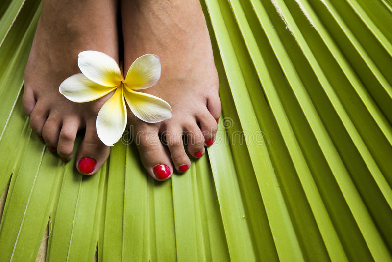 Footspa tropical imagenes de archivo
