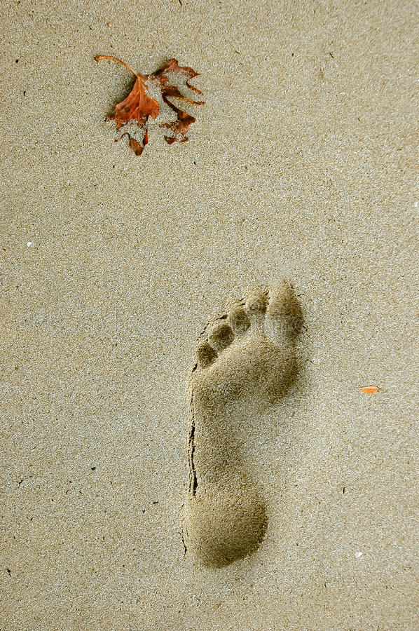 Footstep on the beach stock image