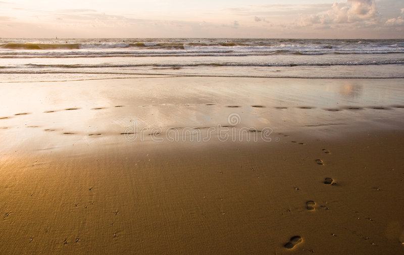 Footsteps. Leave nothing but footsteps when walking along the seashore stock photo
