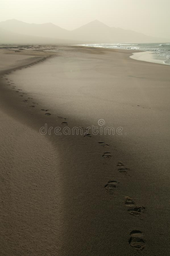Footsteps on the beach. Jandia Natural Park. Fuerteventura. Canary Islands. Spain stock photo