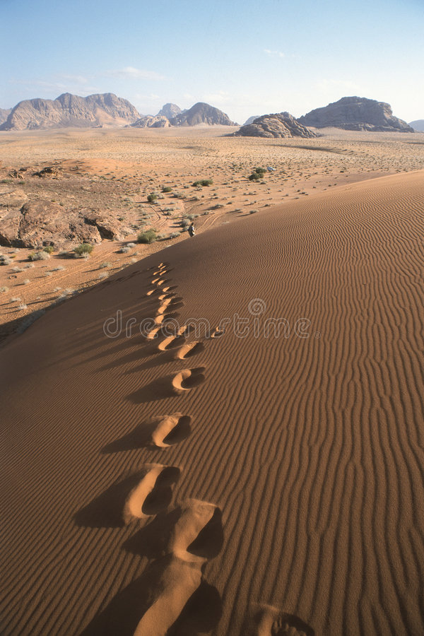 Footsteps in the dunes stock photo